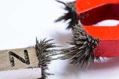 磁铁和铁屑子 免版税库存照片