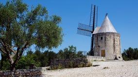 磨房和橄榄树在法国(普罗旺斯)的南部 图库摄影