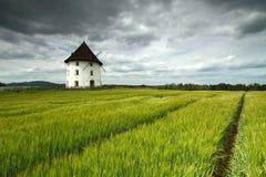 磨房房子和大麦领域 库存照片