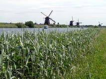 磨房行在小孩堤防,荷兰 免版税库存照片
