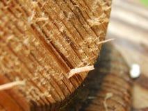 磨损的木头 免版税库存图片