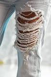 磨损的牛仔裤纹理 免版税库存图片