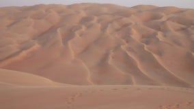 磨擦Al的Khali愉快的游人离开阿联酋储蓄英尺长度录影 影视素材