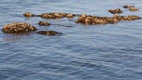 礁石和岩石在海水 股票录像