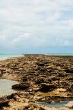 礁石 免版税库存图片