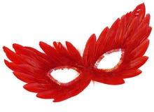 礼服用羽毛装饰欢乐屏蔽红色衣服饰&# 免版税库存图片