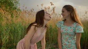 礼服的两个年轻白种人女孩本质上,无所事事,做滑稽的面孔,笑,朋友 股票录像