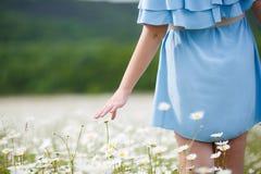 礼服的美丽的女孩在雏菊花田 库存照片