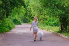 礼服的美丽的年轻白肤金发的女孩走与一条白色蓬松狗的在夏天庭院里 免版税库存图片