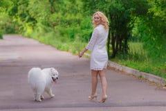 礼服的美丽的年轻白肤金发的女孩走与一条白色蓬松狗的在夏天庭院里 库存图片