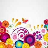 礼物欢乐花卉设计背景 边界春天 免版税库存图片