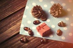 礼物盒和杉木锥体 免版税库存图片