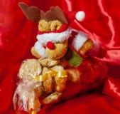 礼物盒意大利家庭做的饼干 库存图片