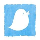 社会啾啾叫媒介蓝色的鸟 免版税库存照片