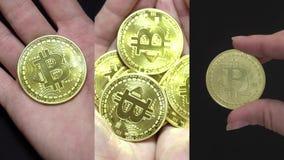 社会媒介应用的垂直的录影在移动设备 举行极少数金黄Bitcoins的手 Cryptocurrency 股票视频