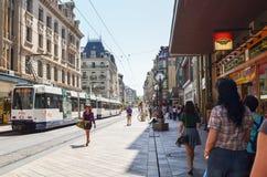 社论:瑞士, 2012年7月14日 公园和outd的游人 库存图片