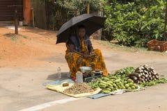 社论说明图象 水果和蔬菜商店  免版税库存图片