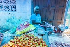 社论说明图象 水果和蔬菜商店  库存图片