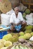 社论说明图象 食物印地安人市场 免版税库存图片