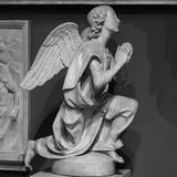 祈祷在公墓的一个白色石天使的雕象 库存图片