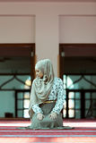 祈祷在清真寺的年轻美丽的回教妇女 免版税库存图片
