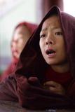 祈祷的佛教新手,缅甸 库存图片