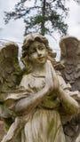 祈祷的天使雕象 库存照片
