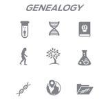 祖先或谱学象设置了与家谱册页,脱氧核糖核酸,额嘴 向量例证