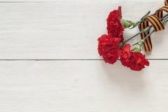 祖国保卫者日 与圣乔治ri的红色康乃馨 库存图片