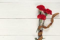 祖国保卫者日 与圣乔治ri的红色康乃馨 免版税库存图片