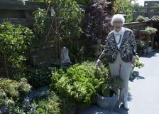 祖母在庭院里 库存照片
