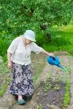 祖母水床 库存图片