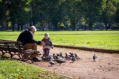 祖父和孙女变老喂养鸽子的4年 免版税库存照片