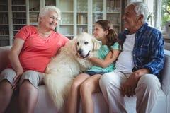 祖父母和孙女坐有爱犬的沙发 图库摄影