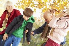 祖父母和孙有叶子的在秋天庭院里 库存图片