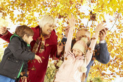祖父母和孙有叶子的在秋天庭院里 免版税库存图片
