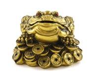 祝好运的中国Feng Shui幸运的货币青蛙 库存照片