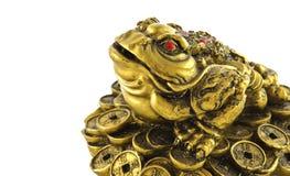 祝好运的中国Feng Shui幸运的货币青蛙 免版税库存图片