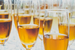 祝贺党的酒 免版税图库摄影
