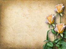 祝贺的葡萄酒卡片与三朵黄色玫瑰 免版税库存图片