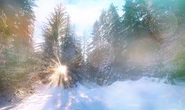 神仙的冬天横向 库存图片