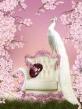 神仙的孔雀 免版税图库摄影