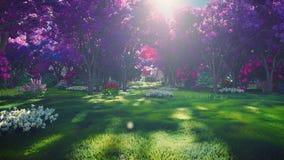 神仙的树森林冠与明亮的阳光、飞行的蒲公英和蝴蝶的 日出的不可思议的森林 股票视频