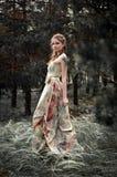 神仙的森林妇女 免版税库存照片