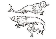 神仙的海猫 库存照片