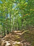 神仙的石国家公园供徒步旅行的小道 免版税库存图片