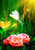 神仙的花 免版税库存图片