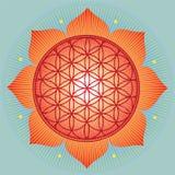 神圣的几何向日葵 免版税库存照片
