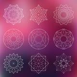 神圣的几何集合 库存图片