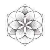 神圣的几何 向量例证